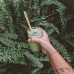 Καλαμάκια από Βιολογικό Μπαμπού (Σετ των 6) Jungle Straws