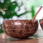 Μπολ Καρύδας με ΔΩΡΟ Ξύλινο Κουτάλι 'Γεωμετρικό Σχέδιο' (1τμχ) Jungle Straws