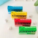 Vegan Φυτική Τσίχλα με Ξυλιτόλη 'Μέντα (10τμχ) Chewsy