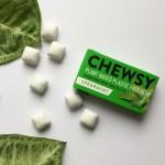 Vegan Φυτική Τσίχλα με Ξυλιτόλη 'Δυόσμος' (10τμχ) Chewsy