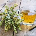 Τσάι του Βουνού - Σιδερίτης Βότανο (30γρ) BioSamos