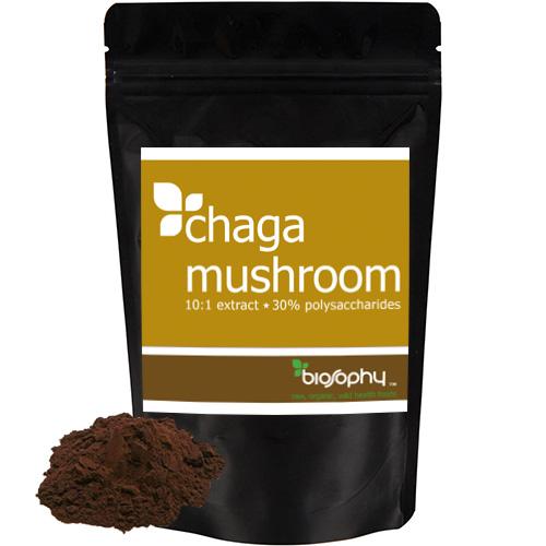 Εκχύλισμα Μανιταριού Chaga 10:1 σε Σκόνη με 30% Πολυσακχαρίτες (50γρ) Biosophy