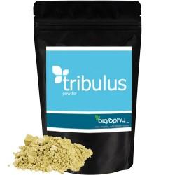 Τριβόλι σε Σκόνη 'Tribulus Terrestris' (100gr) Biosophy