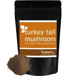 Εκχύλισμα Μανιταριού Turkey Tail 8:1 σε Σκόνη με 30% Πολυσακχαρίτες (50γρ) Biosophy