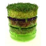 Δισκάκια Βλάστησης Σπόρων για Φύτρα (x3) Geo Sprouter